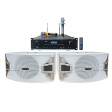 AP-650B三合一纯数字豪华10寸白色音箱卡拉OK音箱套餐