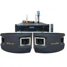 AP-650B三合一纯数字豪华10寸卡拉OK音箱套餐2