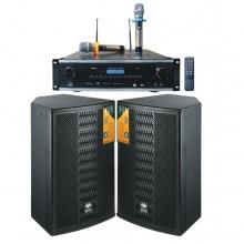 AP-650C三合一纯数字高功率豪华10寸卡拉OK音箱套餐