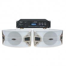 DK820蓝牙升降调纯数字高级10寸白色卡拉OK专用音箱套餐