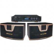 DK820蓝牙升降调纯数字高级10寸卡拉OK专用音箱套餐1