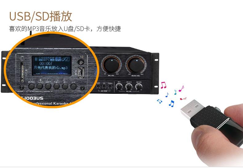 DS-1003US高功率蓝牙升降调专业KTV功放