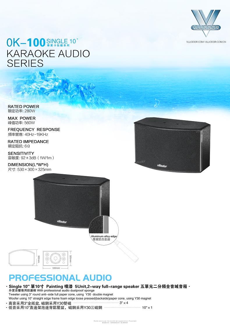 AM6008高级10寸卡拉OK专用音箱套餐