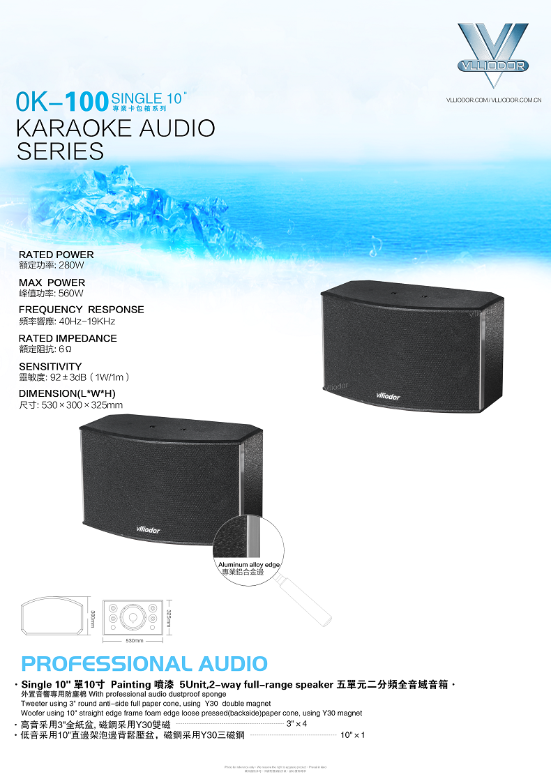 DS-1003US升降调高级10寸卡拉OK专用音箱套餐