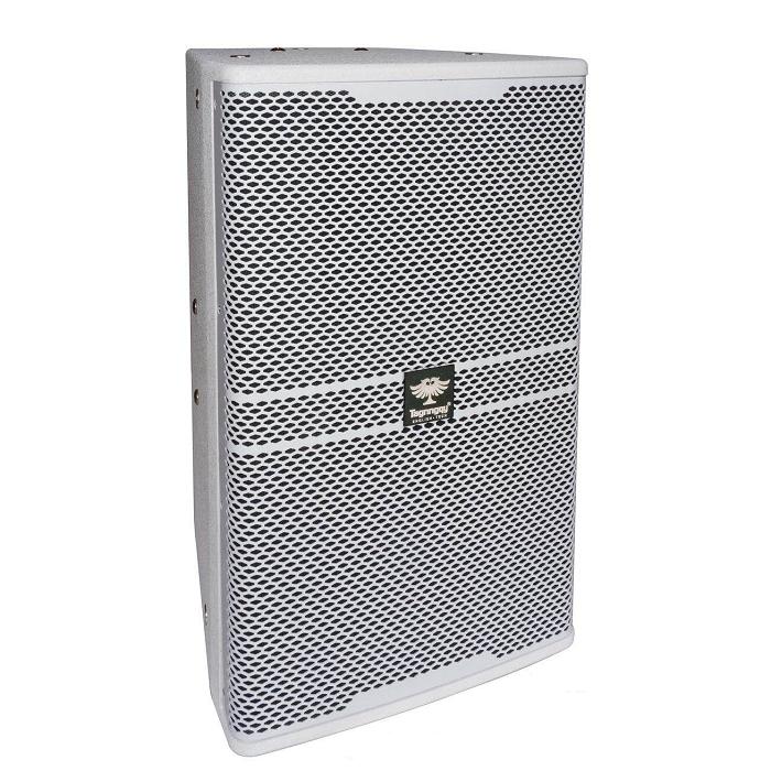 PK-2300高级10寸卡拉OK专用音箱套餐